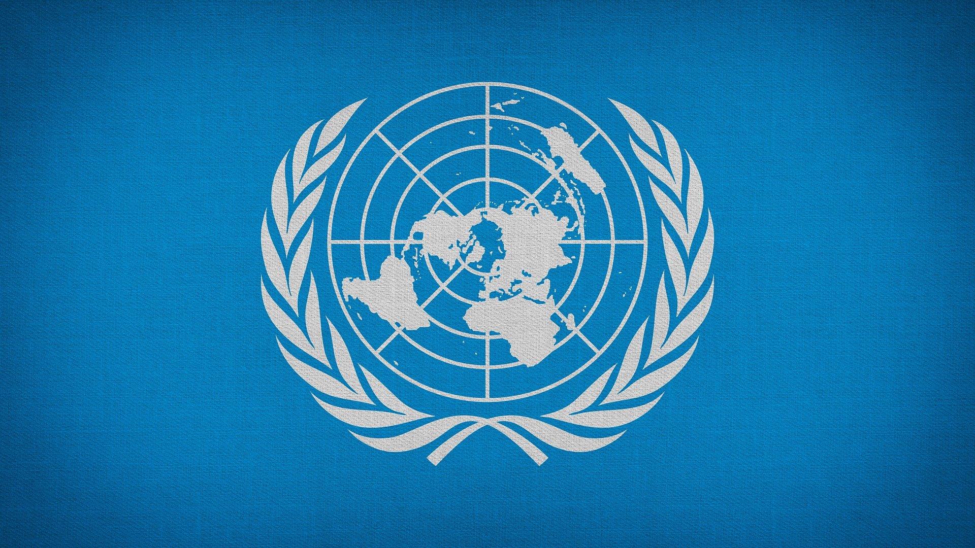Informe Anual do Relator Especial da ONU